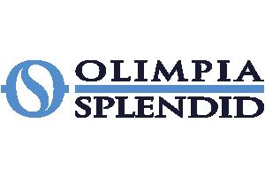 Assistenza climatizzatori Olimpia Splendid
